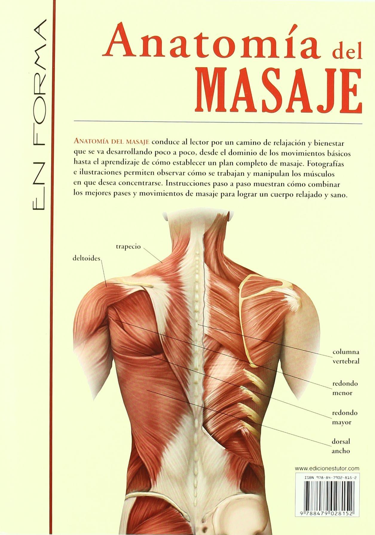 Anatomia del masaje / Massage Anatomy: A Comprehensive Guide ...
