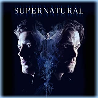 Book Cover: Supernatural: S14