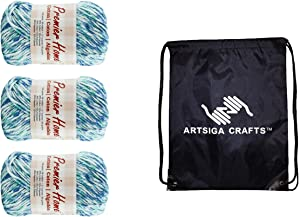 Premier Knitting Yarn Home Cotton Worsted Multi Robin's Egg Speckle 3-Skein Factory Pack (Same Dye Lot) 44-50, Recycled Cotton-Polyester Blend, Bundle with 1 Artsiga Crafts Project Bag