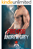 Fire and Fog (Carlisle Cops Book 6)