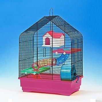 CTC de Trade | hámster Jaulas exterior tamaño 40 x 25,5 x 54 Ratones jaula hámster adolescente plástico animales pequeños jaula con accesorios: Amazon.es: ...