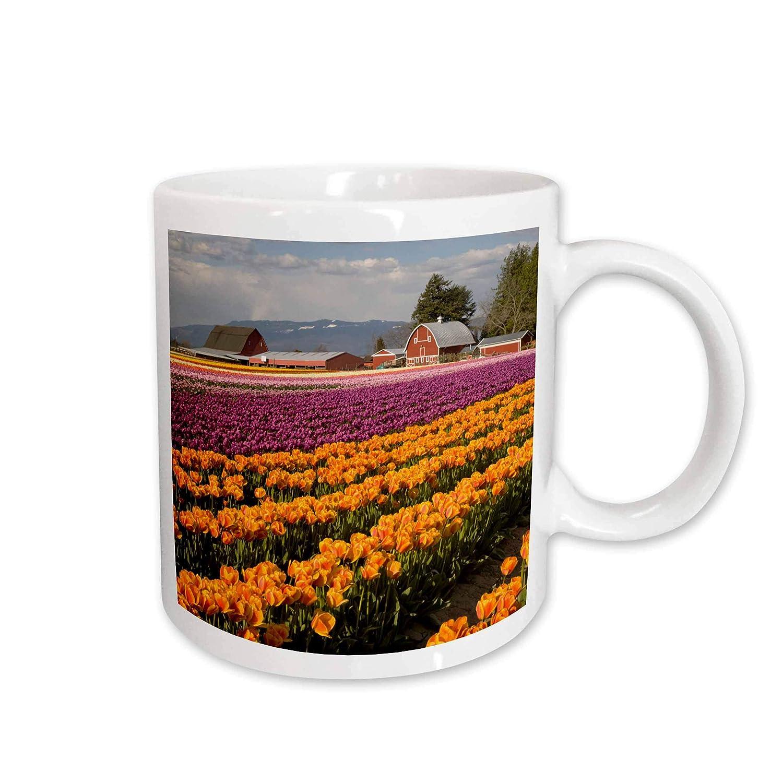 Tulip Farm in Bloom-Us48 Jwi2852-Jamie and Judy Wild Ceramic Mug 11 oz White Skagit Valley 3dRose 96292/_1 WA