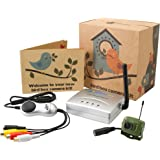 Wireless Bird Box Camera with Night Vision, Receiver and USB Connector- Record to your PC, Motion Detection, 2.4GHz, Garden Wildlife Camera
