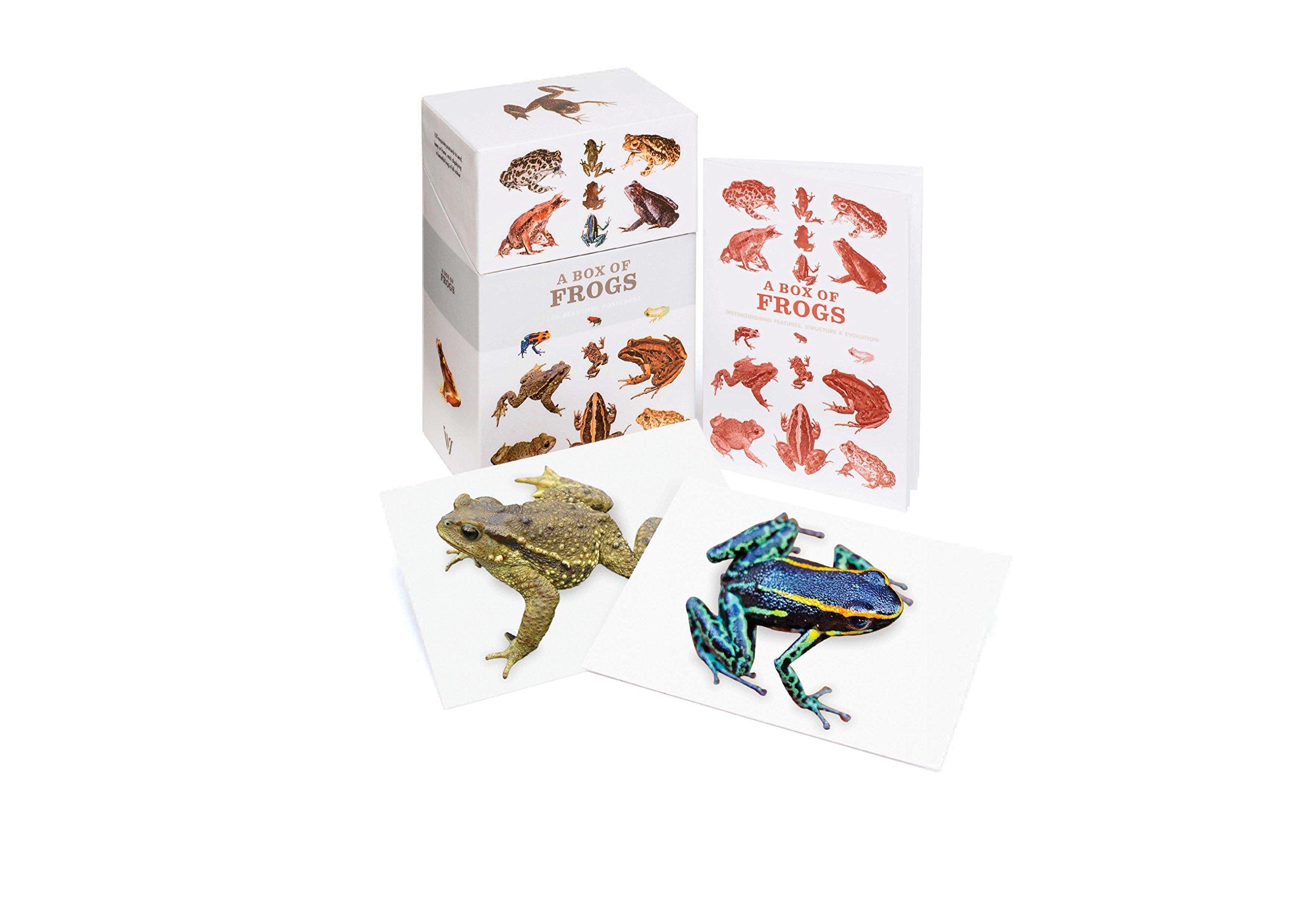 A Box of Frogs: 100 Beautiful Postcards pdf epub