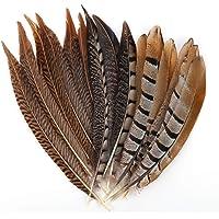 MWOOT plumas de cola de faisán naturales 15pcs