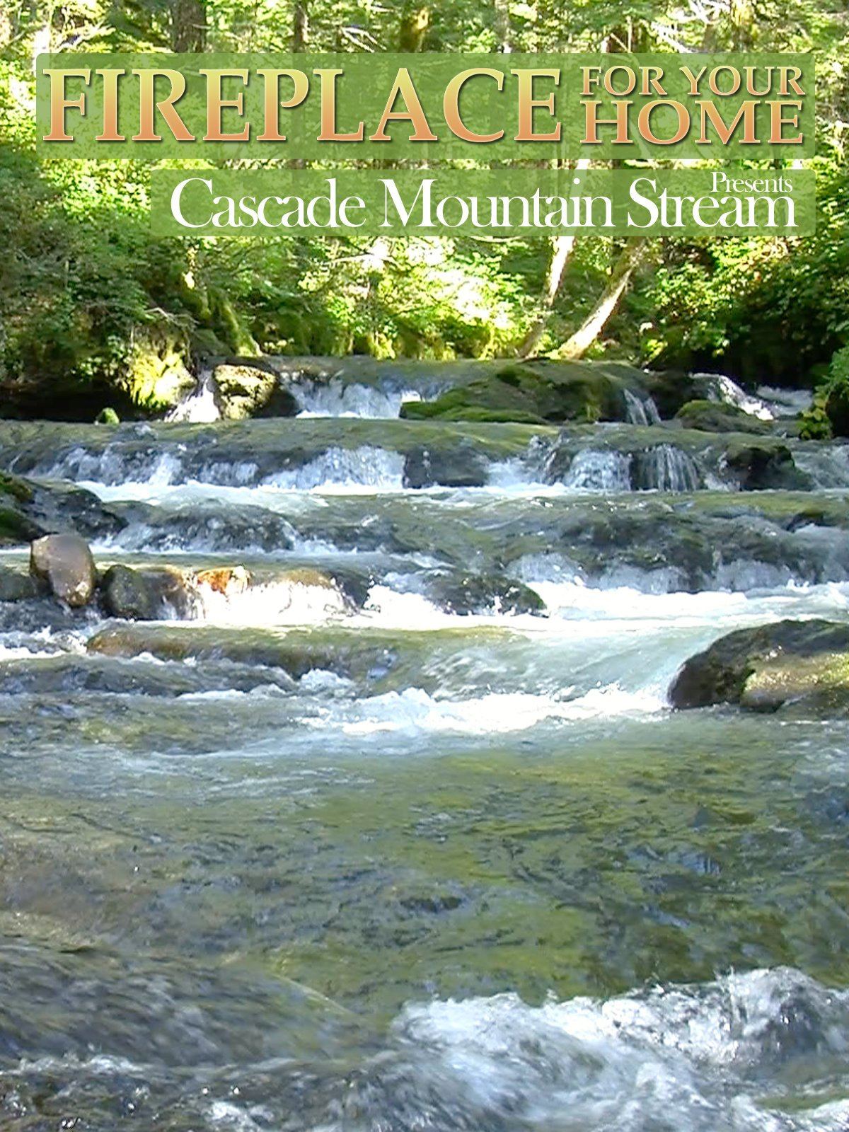amazon com mountain stream a mountain stream background for