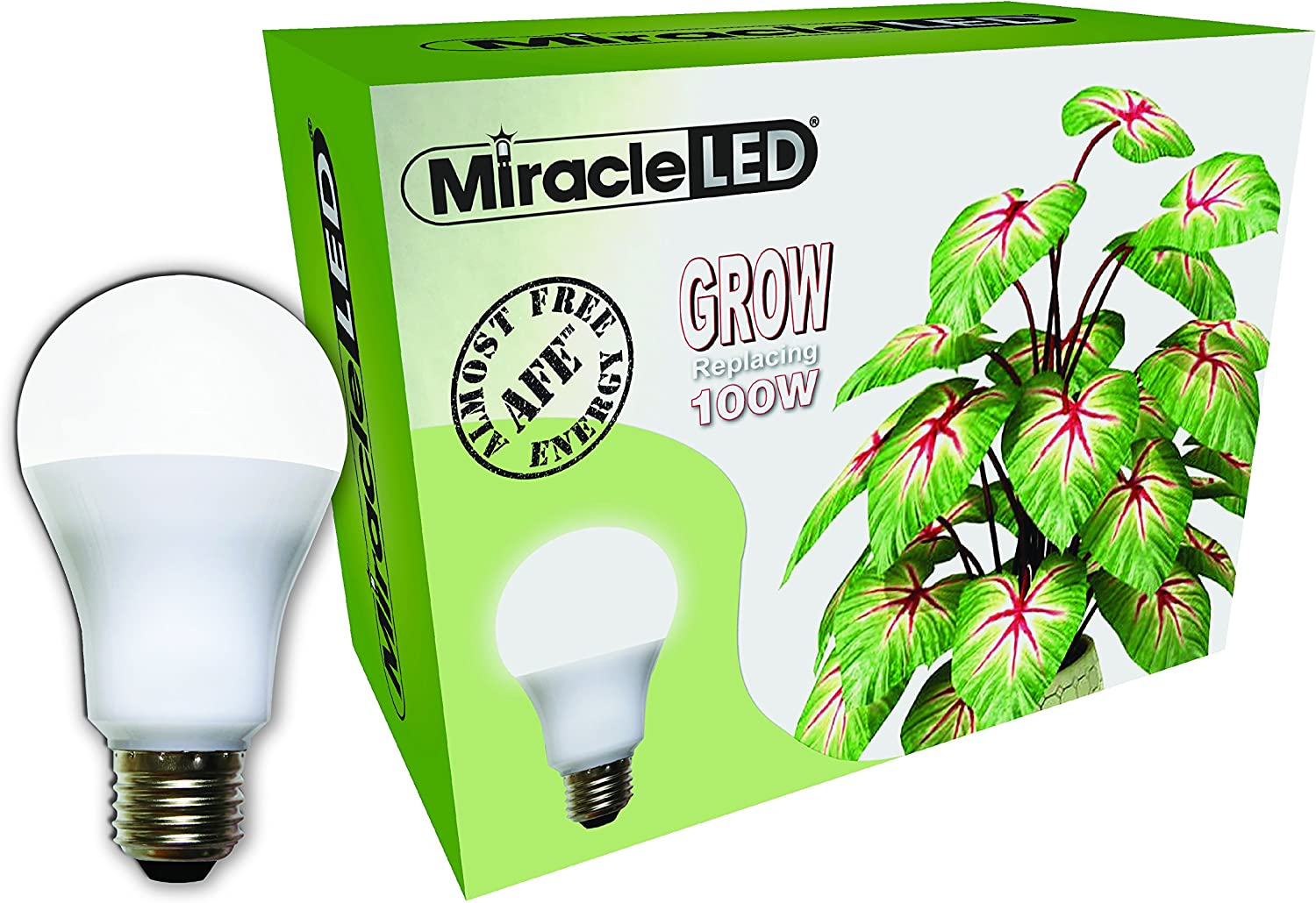 How Many Watts Per Square Foot for Led Grow Lights You Need