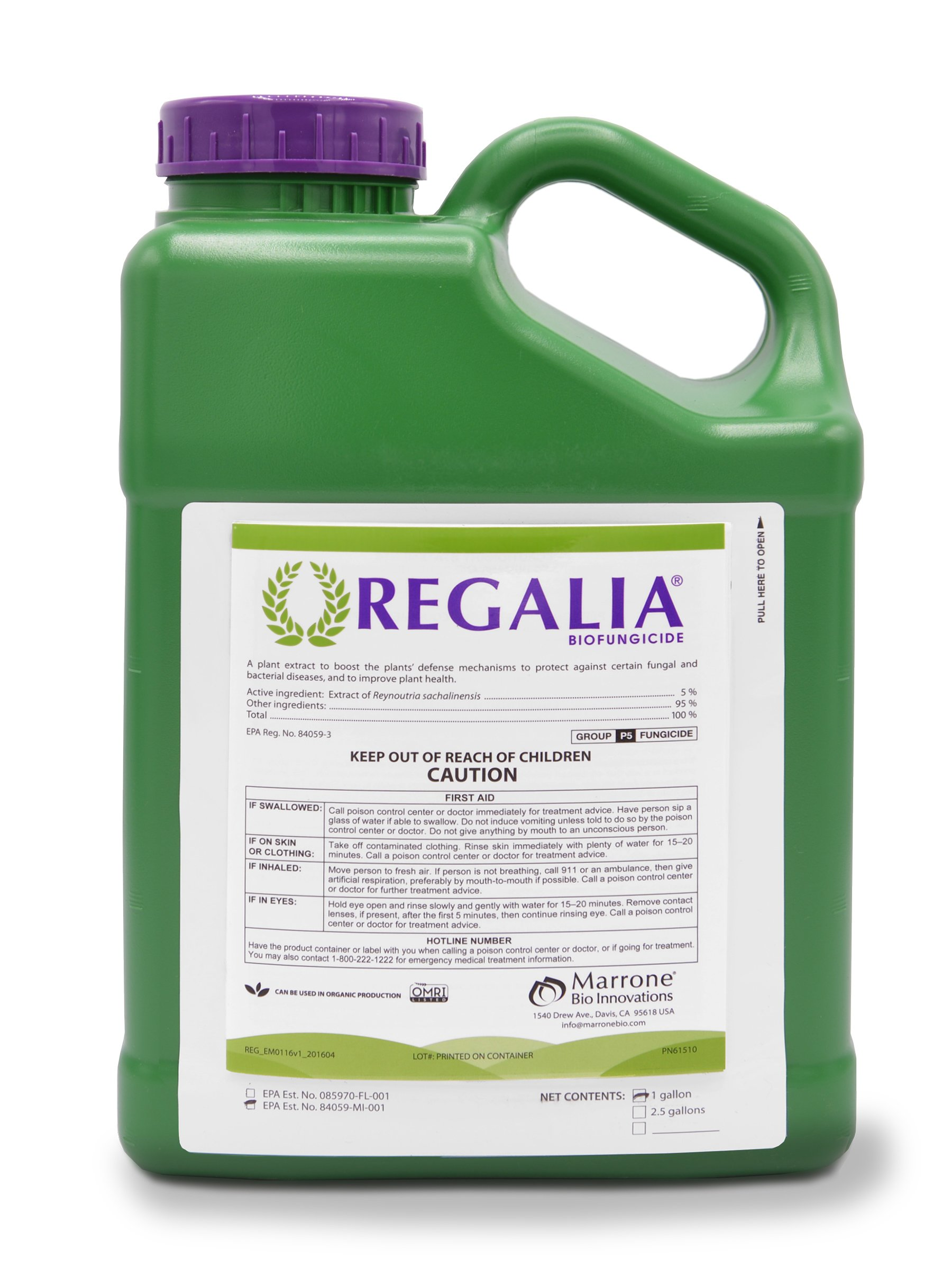 Regalia Biofungicide, 1 Gallon, Fungicide inhibits fungal and bacterial disease boosting yield, 0-Day PHI, 4 Hour REI, OMRI Listed (1) by Marrone Bio Innovations