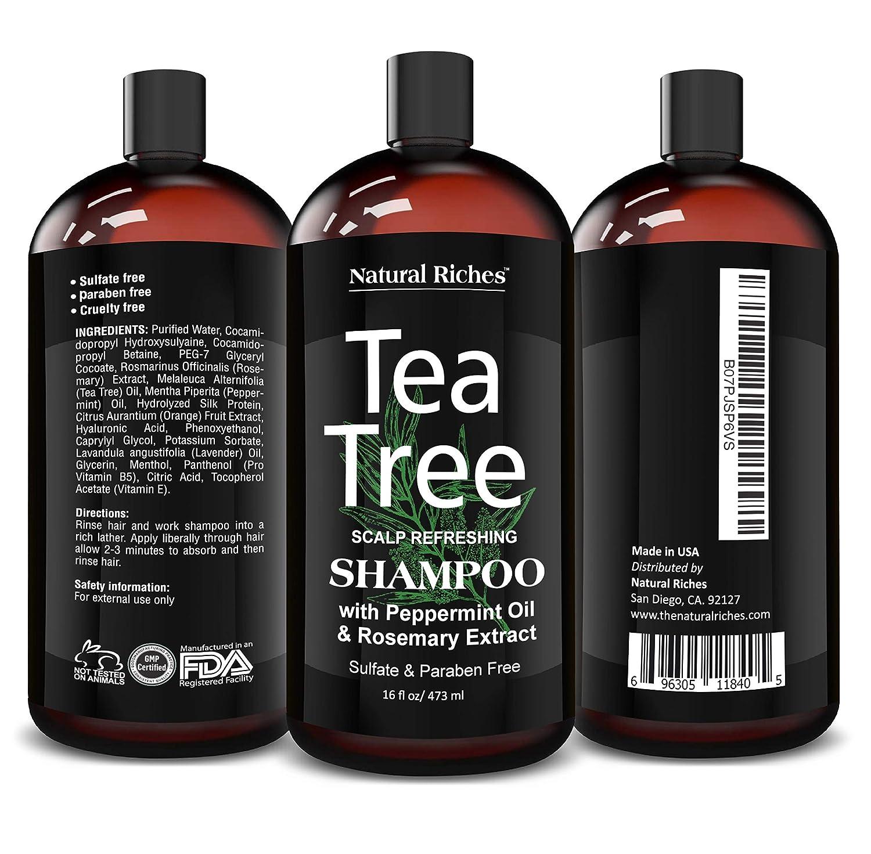 Natural Riches Tea Tree Shampoo 16 fl oz  Special Tea Tree Oil Shampoo Fights Dandruff with Pure Tea