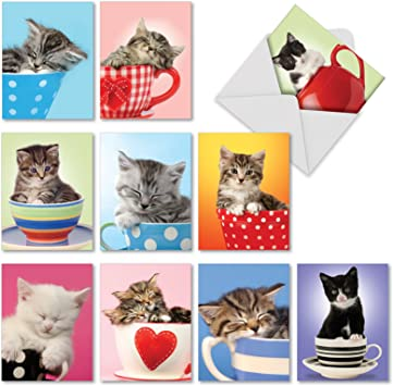 10 Assorted Blank All-Occasion Note Cards //Matching Envelopes. M3969 Cup-Cats