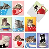 M3969 Cup-Cats: 10 Assorted Blank All-Occasion Note Cards Are Filled to the Brim With Adorable Kitten Cuteness, w/White Envelopes.
