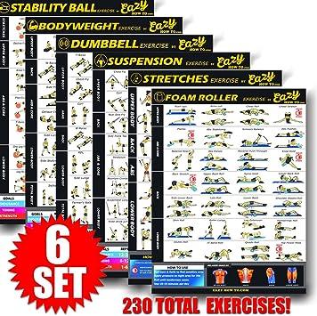 3 Pack construir fuerza /& M/úsculo Gimnasio en casa gr/áfico Eazy c/ómo a Multi Pack Bundle para Jovencita Ejercicio Workout Banner P/óster 28/x 20/tren Endurance tono