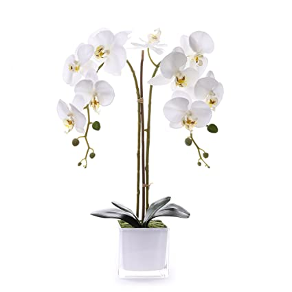 Amazon Livilan Silk Butterfly Orchid In Mirrored Vase Tall