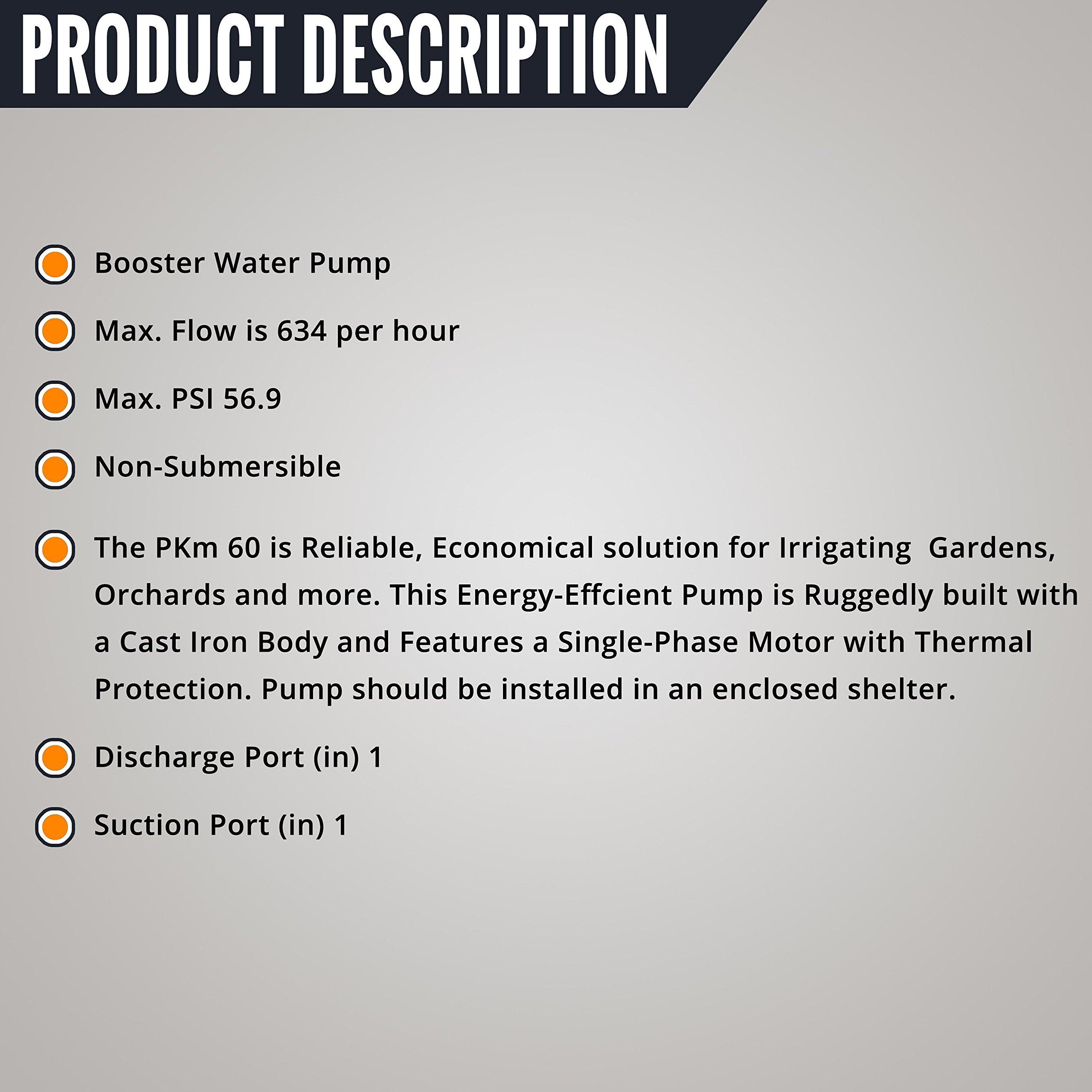 Pedrollo Booster Water Pump — 634 GPH, 1/2 HP, 115 Volts, Model# PKm60 by Pedrollo (Image #2)