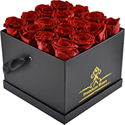 Real Roses That Last 365 Days |Valentine's Day Collections| Roses with Longevity (Medium, Red)