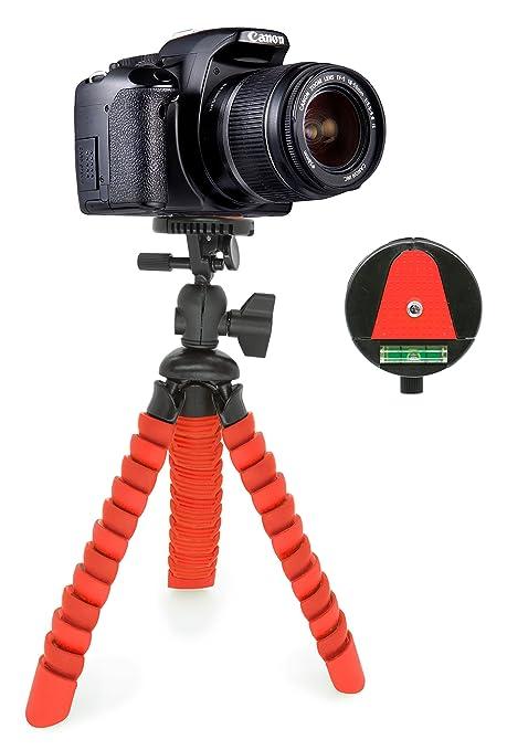 Mygadget Mini Trípode Ultra Flexible para Cámara con Liberación rápida de Placa: Amazon.es: Electrónica