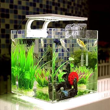 deckey peces acuario Juego completo LED, con morderner LED de Acuario iluminación, con 2,5 W Acuario Bomba Acuario, iluminación, acrílico peces acuario: ...