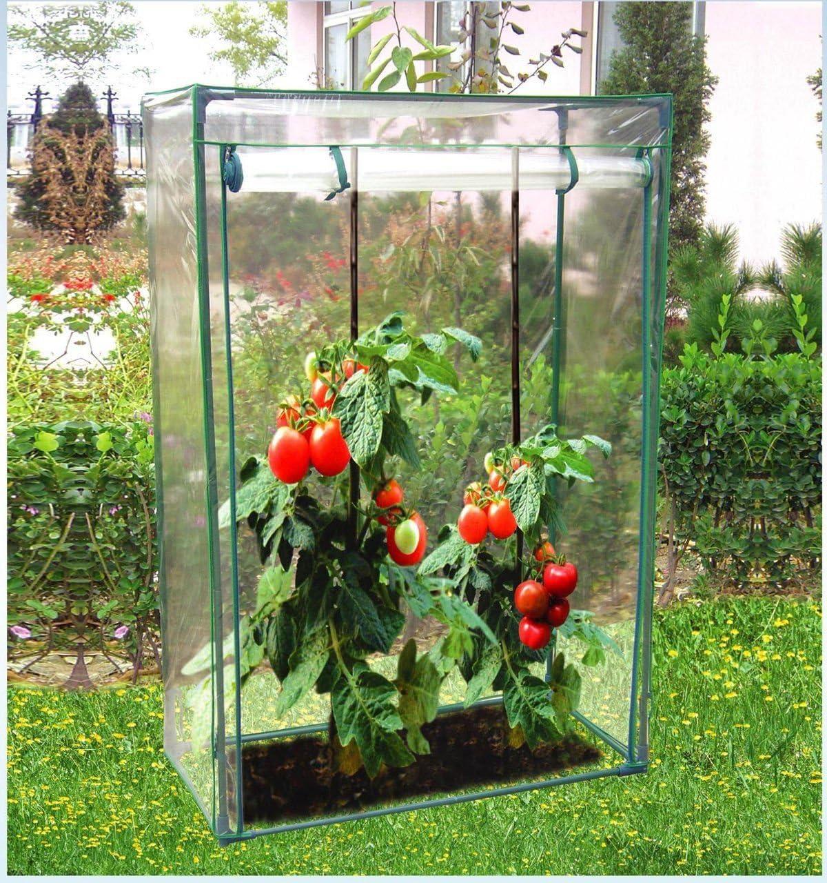 Invernadero de jardín con Cubierta de PVC, diseño de Horizon, Color Azul: Amazon.es: Jardín