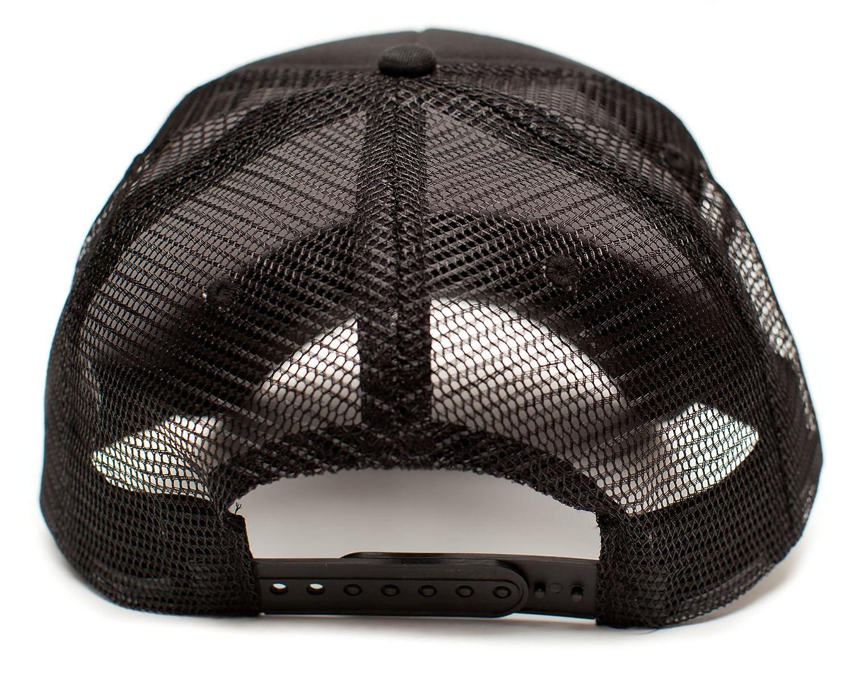 Amazon.com: WARHEAD Dimebag Darrell Unisex Adult One-Size Black/Black Snapback Truckers Hat Cap: Clothing