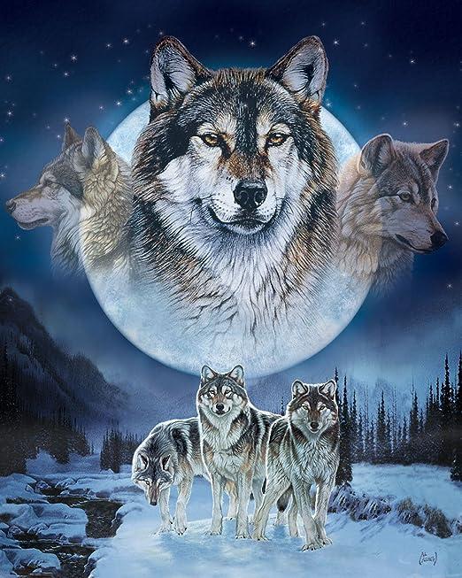 Amazon.com: MHS 'Wolf Pack' Al Agnew Luxury Plush Queen Size ...