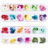GOTONE 108pcs Dried Flowers 3D Nail Art Stickers Decoration DIY Preserved Real Flower Stickers Tips Manicure Decor Mixed…
