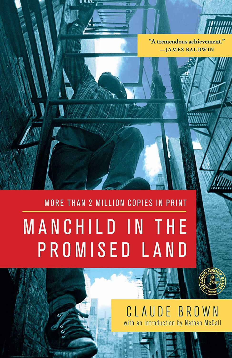 Manchild in the Promised Land (English Edition) eBook ...