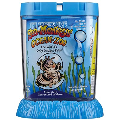 Schylling Sea Monkeys Ocean Zoo Colors May Vary by Schylling: Home & Kitchen