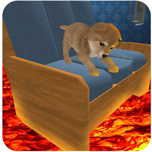 (The Floor is Lava : Cute Puppy)