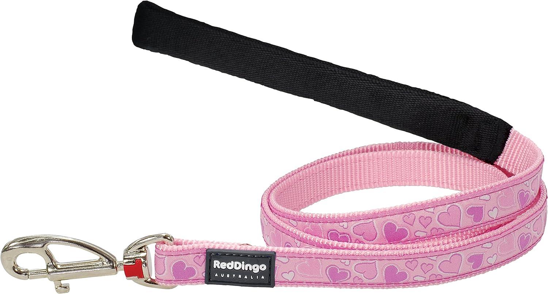 Red Dingo GmbH Correa Perro Breezy, Rosa, S: Amazon.es: Productos ...