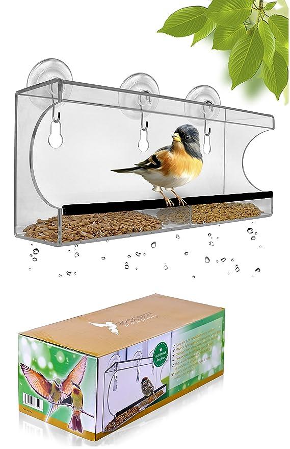 Amazon.com: Ventana grande Bird Feeder – hermoso envase ...