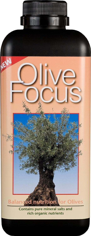 Growth Technology Ltd GTOLF1 Olive Focus Liquid Concentrated Fertiliser 1 Litre