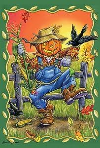 Toland Home Garden Dancing Scarecrow 28 x 40 Inch Decorative Fall Autumn Bird House Flag