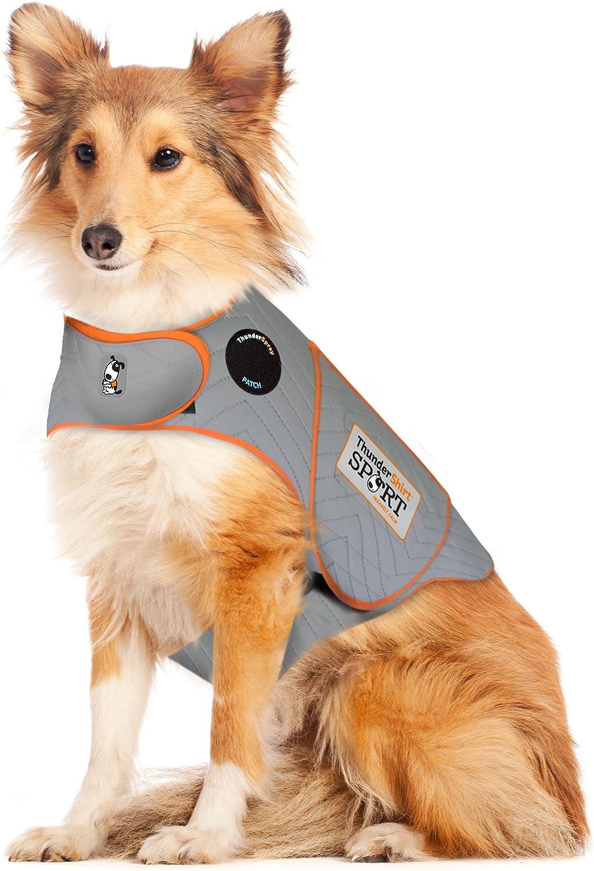8 best dog comfort vest 1