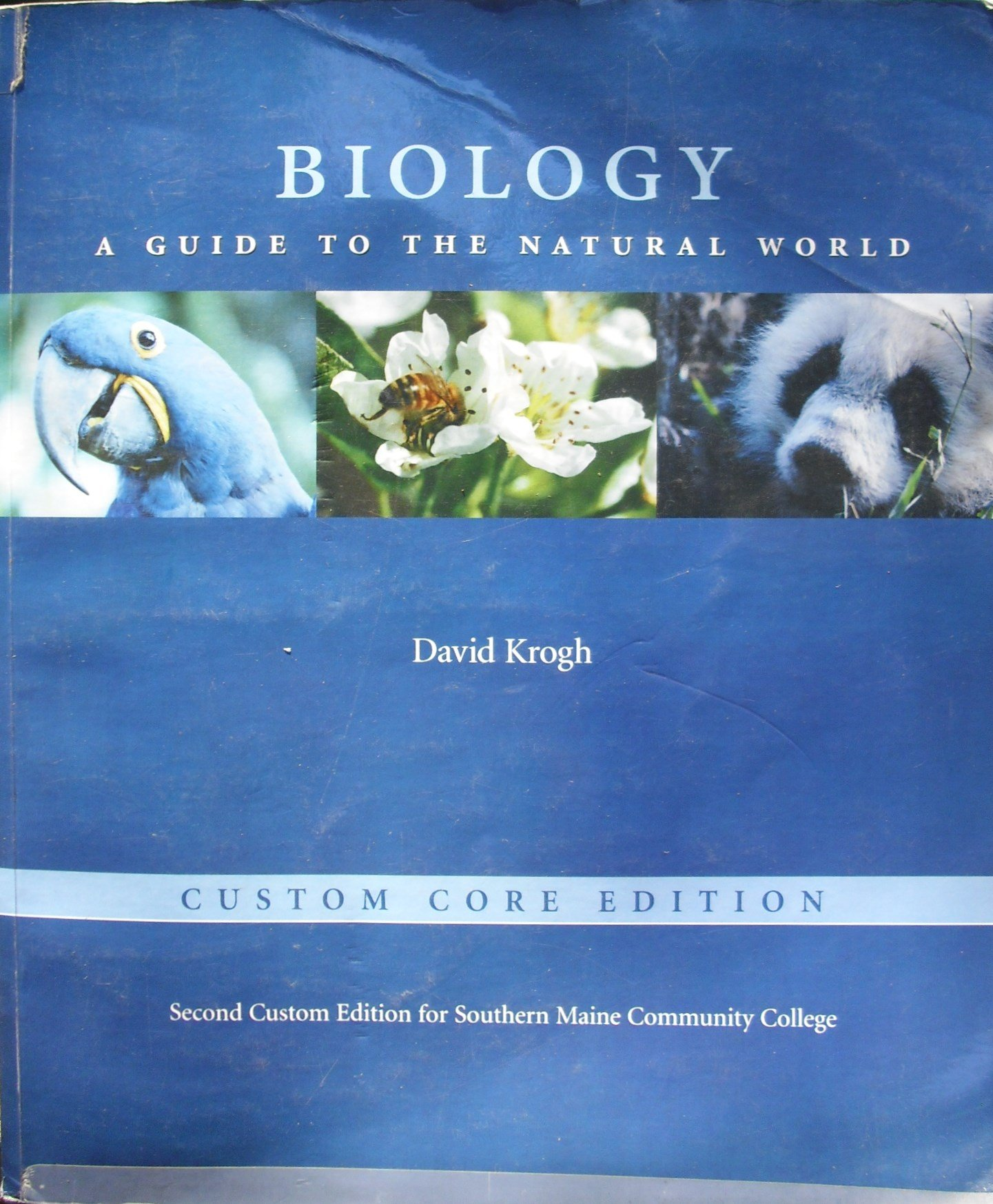 Biology: A Guide to the Natural World Custom Core Edition: Pearson Custom  Publishing, David Krogh: 9780536779595: Amazon.com: Books