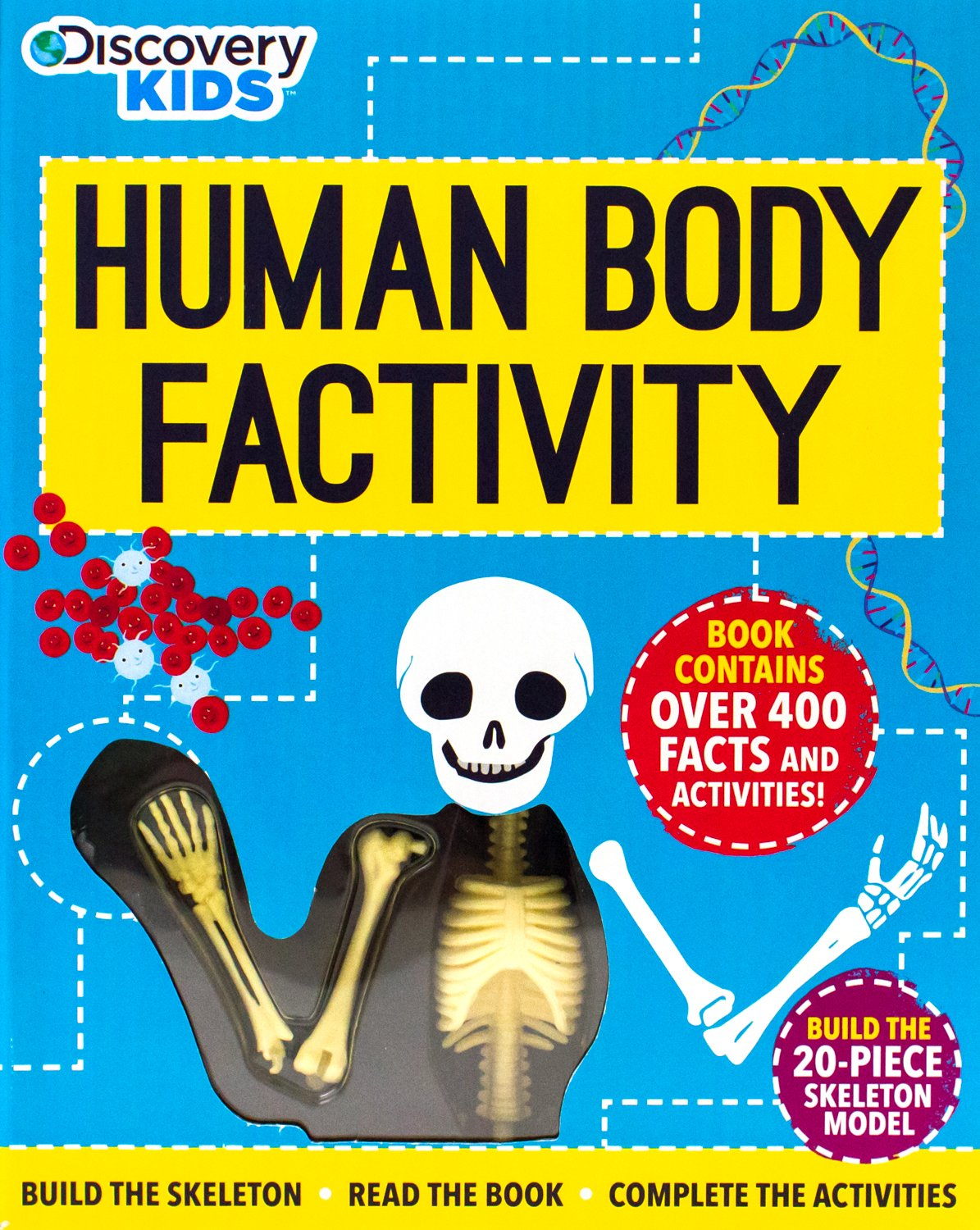 Discovery Human Body Factivity Build The Skeleton Read The Book