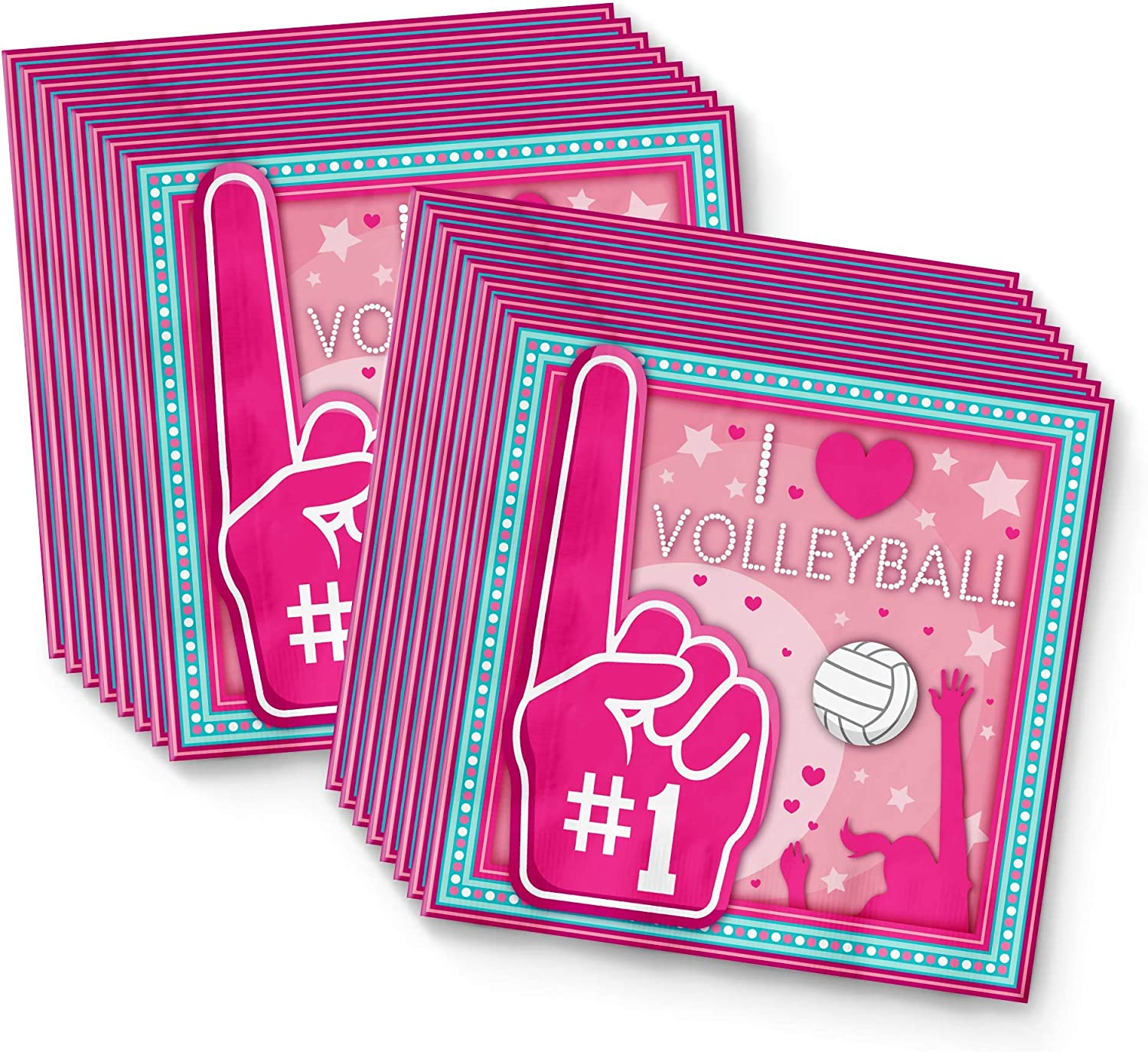 I Love Volleyball Birthday Party Supplies Set Plates Napkins Cups Tableware Kit for 16