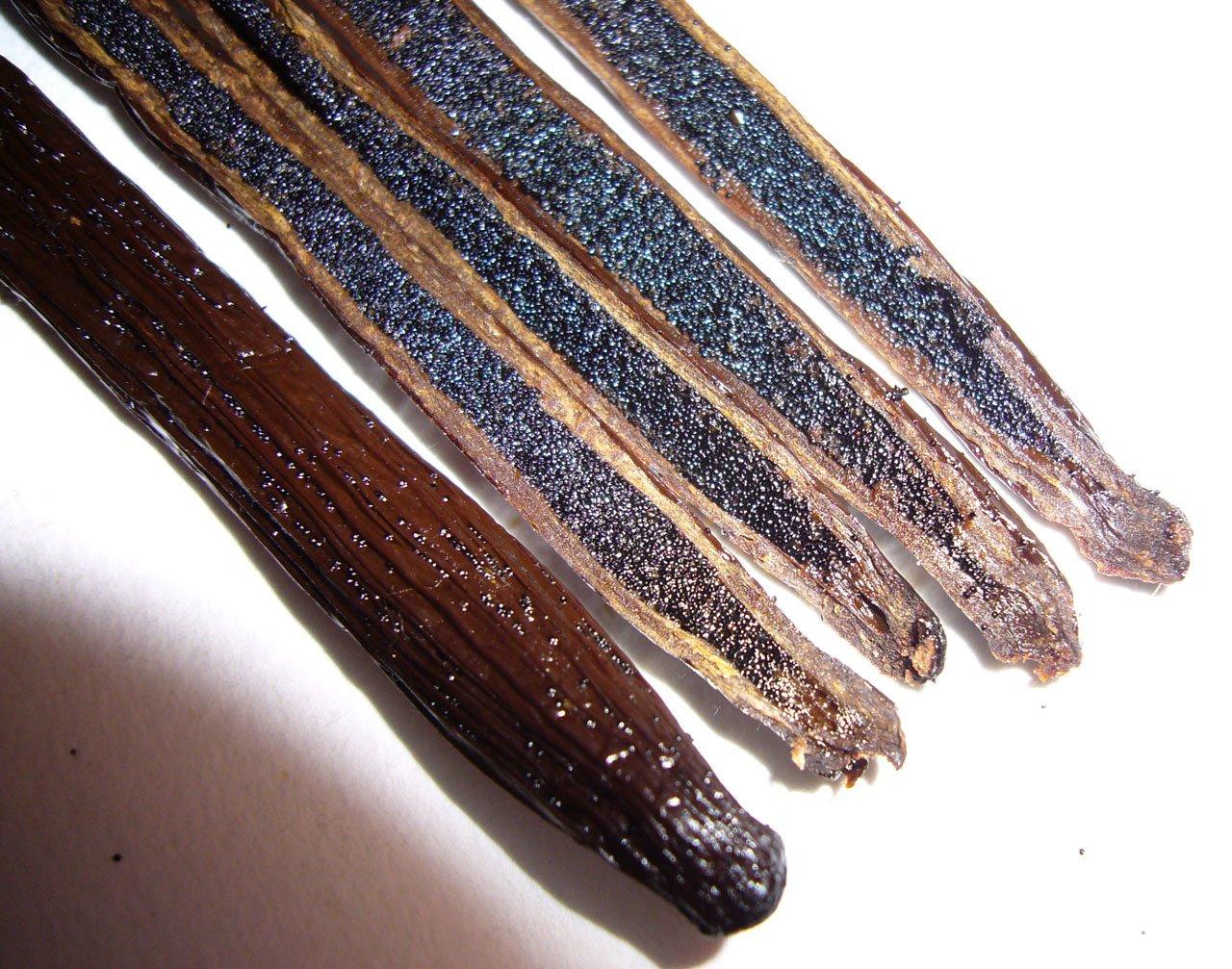 Madagascar Vanilla Beans. Whole Grade A Vanilla Pods for Vanilla Extract and Baking (10 Beans) by Vanilla Bean Kings (Image #5)