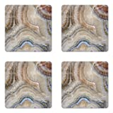 Ambesonne Marble Coaster Set of Four, Surreal Onyx