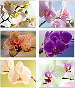 """Orchid Blank Note Cards - Flower Greeting Cards with Envelopes - 6 Unique Designs - 5.5""""x4.25"""" (12 Pack)"""