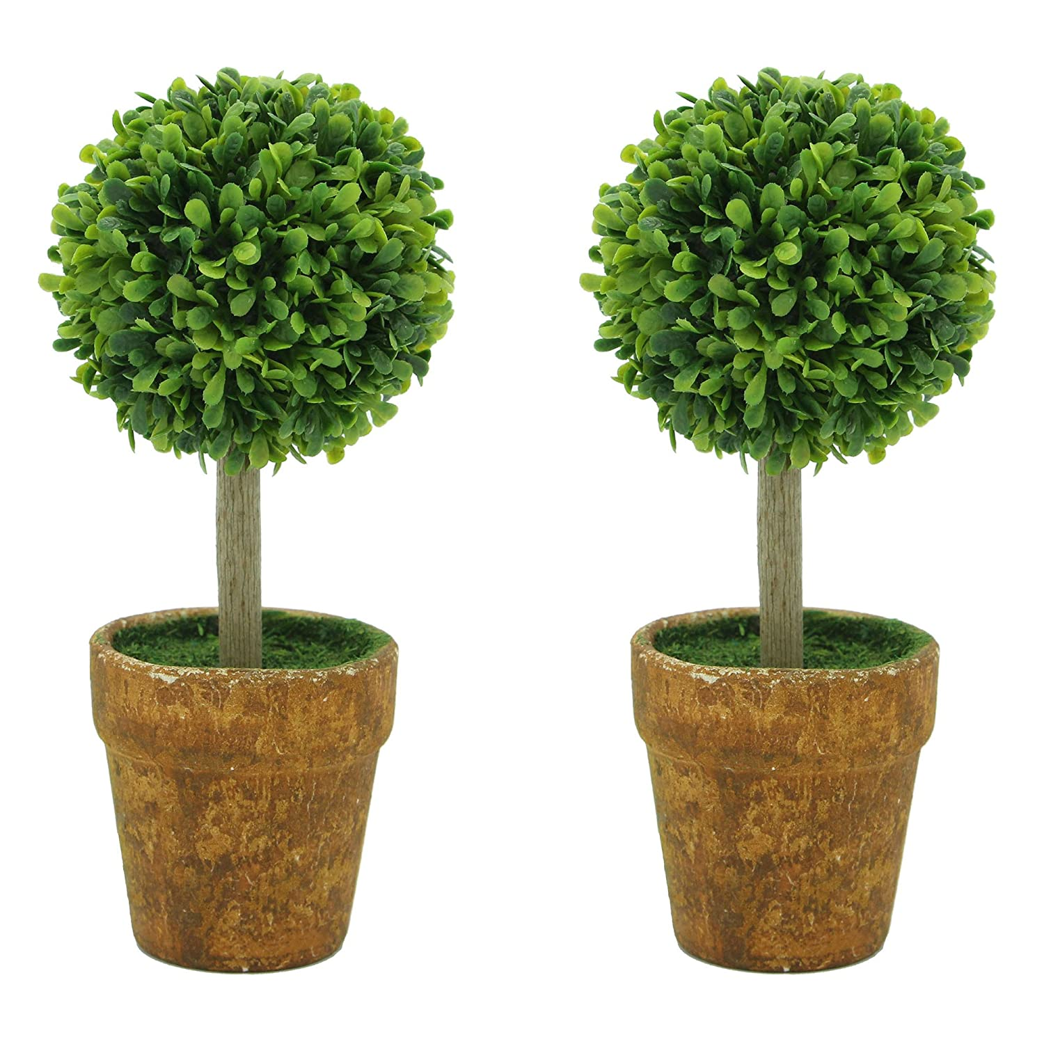 Small Plants For Office Desk Winsome Small Desk Plants