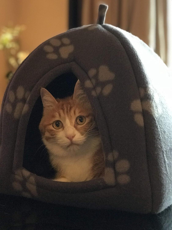 PETEQ Cuccia gatto pieghevole in materiale di alta qualit/à Nicchia gatto in diversi colori 33cmx33cmx40cm