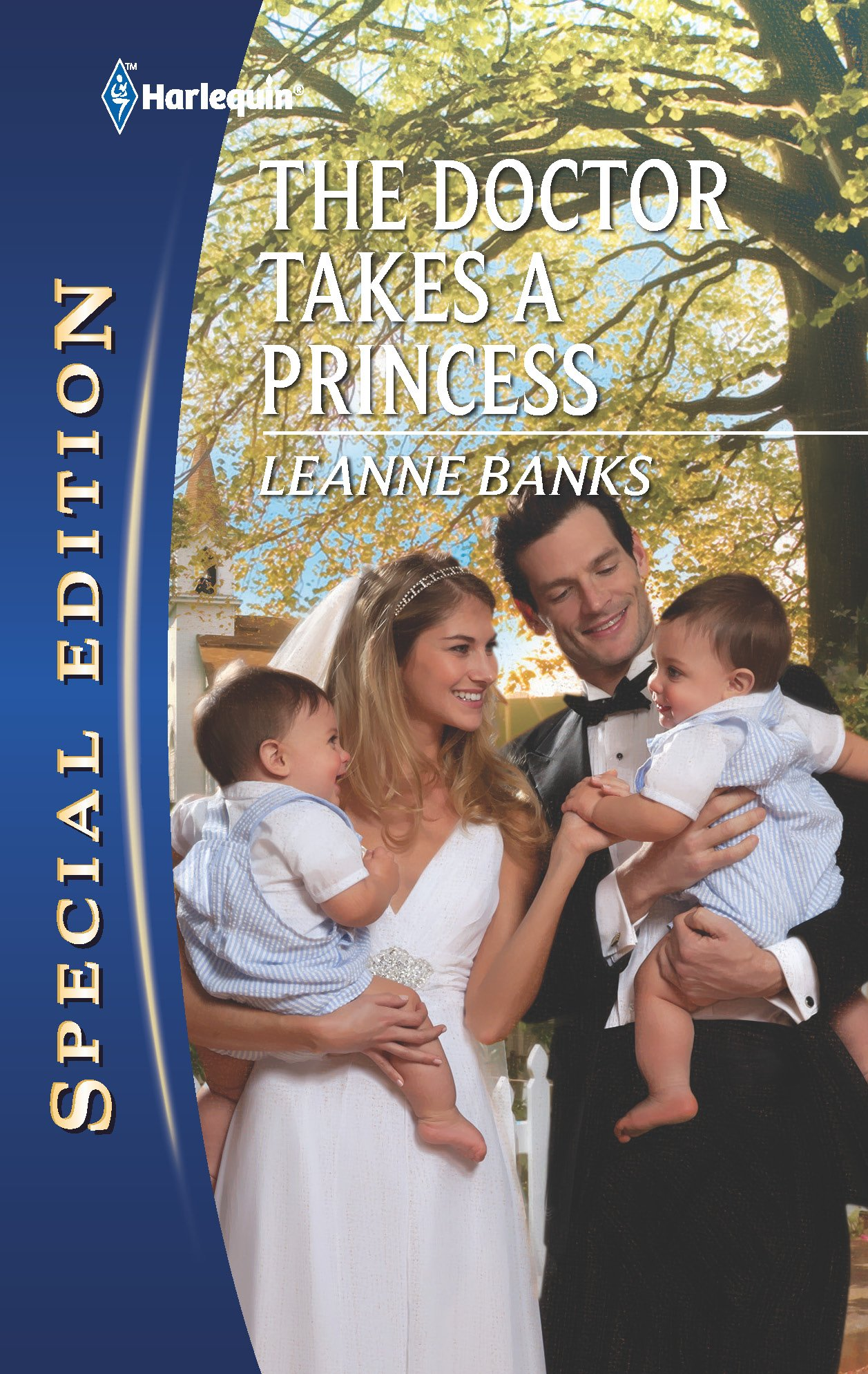 Download The Doctor Takes a Princess pdf