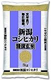 新潟県産 玄米 コシヒカリ 5kg 令和元年産