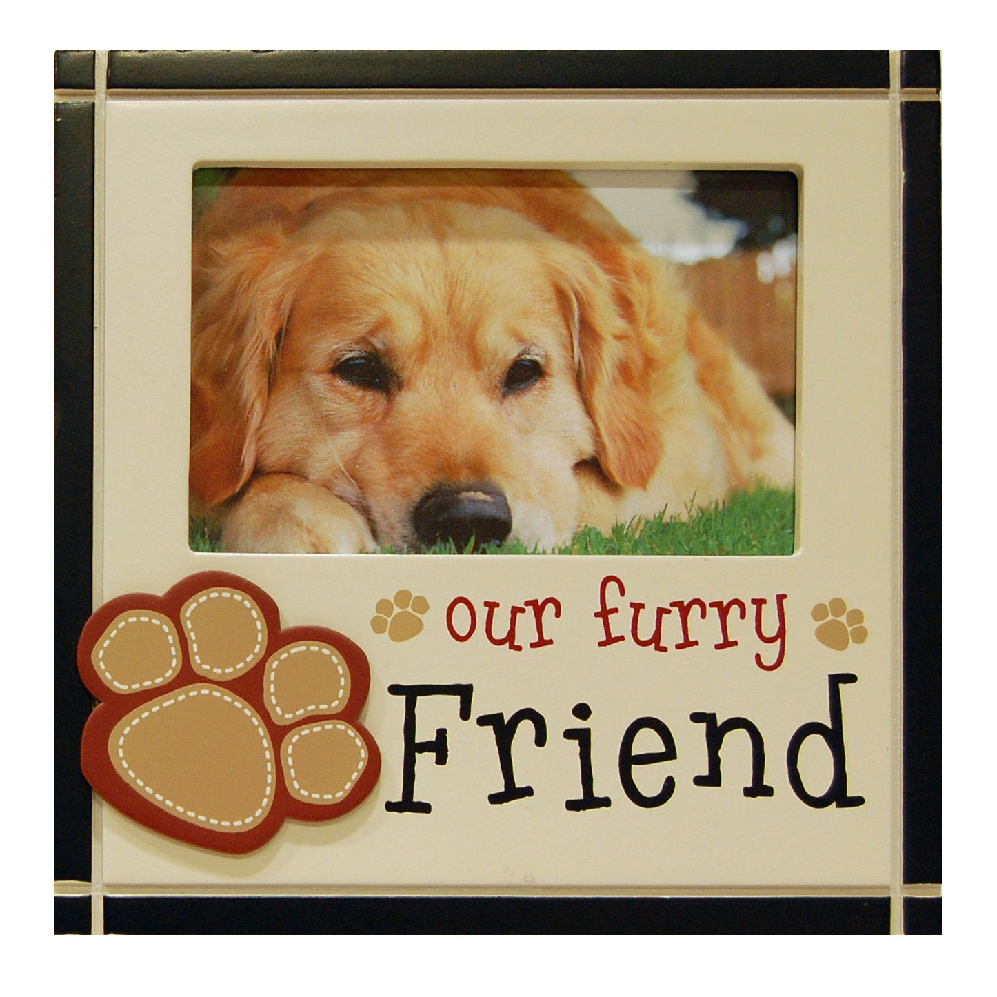 Haven Furry Friend Novel Expressions Frame