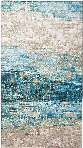 Amida Distressed Persian Rug Doormat Vintage Navy Bohemian Area Rug 3 x5 Area Rug