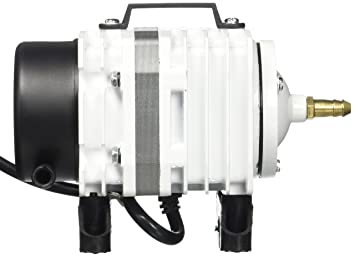 Amazon coralife energy savers acl01656 hp super luft pump sl coralife energy savers acl01656 hp super luft pump sl 38 ccuart Images
