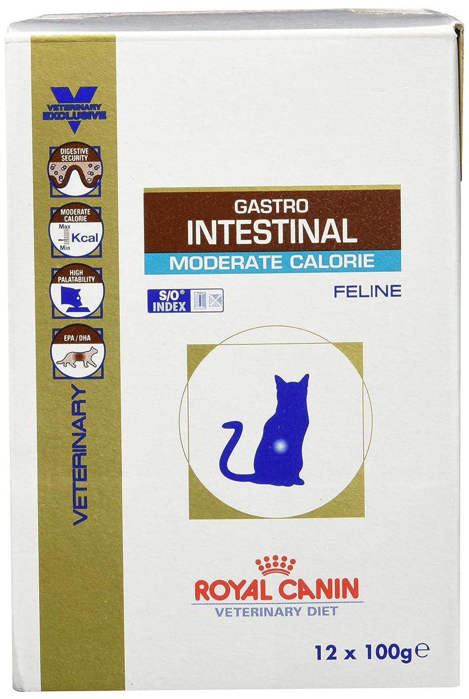 ROYAL CANIN Gastro Intestinal Moderate Calorie Comida para Gatos - 4800 gr: Amazon.es: Productos para mascotas