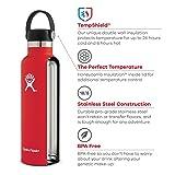Hydro Flask Standard Mouth Water Bottle, Flex Cap