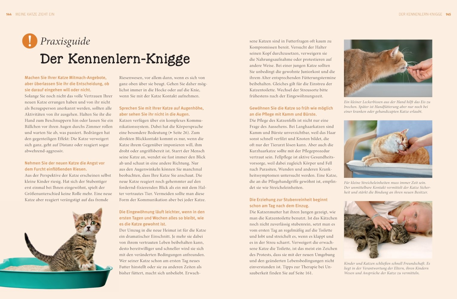 Praxishandbuch Katzen Amazon Gerd Ludwig Bücher