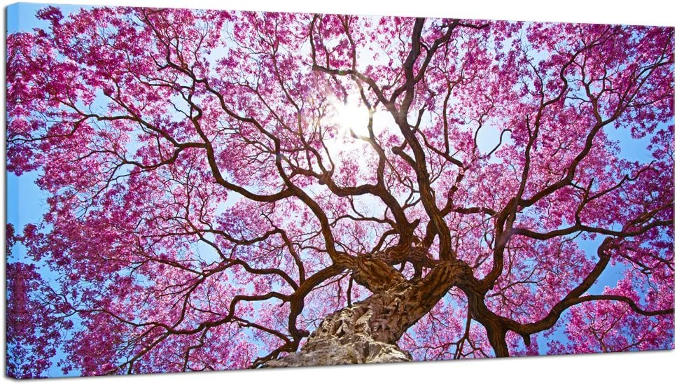 Amazon Com Pyradecor Cherry Blossom Tree Large Modern Floral Giclee Canvas Prints On Stretched Landscape Canvas Wall Art Spring Pink Flowers Pictures Paintings Artwork For Living Room Bedroom Home Decorations L Posters